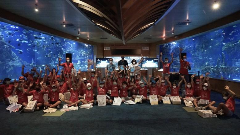 Les extraordinàries històries dels animals marins a l'Oceanogràfic
