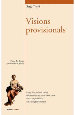 Visions provisionals